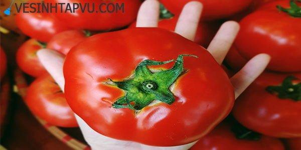 Bí quyết bảo quản cà chua tươi ngon