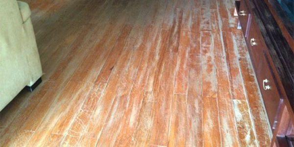Các mẹo chống ẩm mốc cho sàn gỗ tại văn phòng và nhà cửa